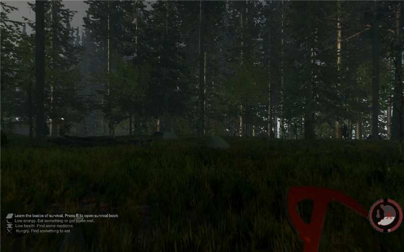 The Forest [v 0.69] (2014)